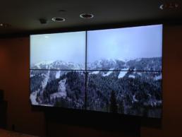 Hotel Lobby LCD Video Wall